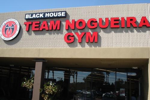 Nogueira academy.